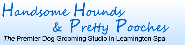 Handsome Hounds & Pretty Pooches - The Premier Dog Grooming Studio in Leamington Spa